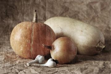 still life of garlic, pumpkin, onion and marrow