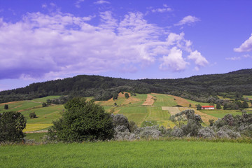 field and mountains (lemkowszczyzna - poland)