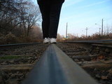 walking the tracks
