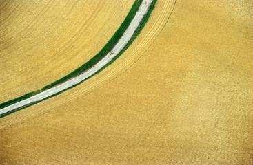 aerial wheat field