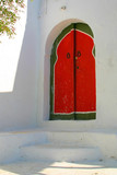 traditional door from cartagena, tunis poster