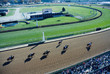 horse racing - 1827329