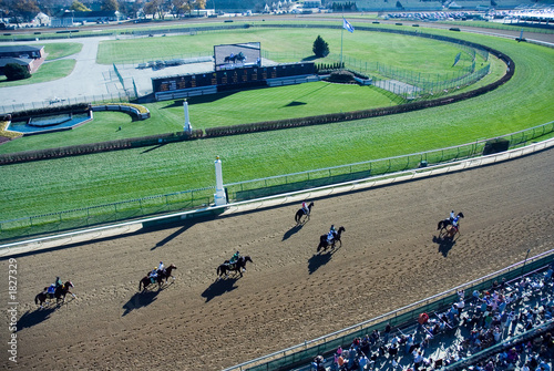 Aluminium Paardensport horse racing