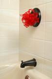 new shower poster