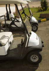 electrocars for movement on fields for a golf