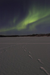 northern lights activity over frozen lake