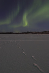 faint aurora borealis over frozen lake