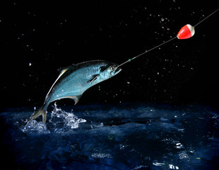 catching a big fish at night