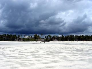 spiaggia tropicale vista dal mare