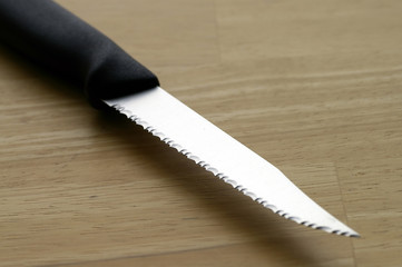 steak knife blade