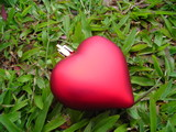 single red heart against grass background poster