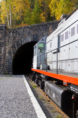 entrance to the tunnel (around baikal railroad)