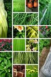 jardinage - Fine Art prints