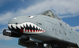 nose of ground attack jet fighter