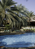 swimming pool of hotel tropical refuge poster