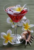 plumeria punch tropical drink poster