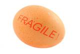 fragile free-range egg poster