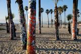 Fototapety graffiti palm