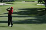 golf swing in valderrama, spain poster