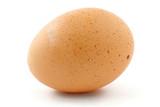 free-range egg poster