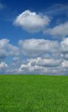 idyllic summer scenery poster