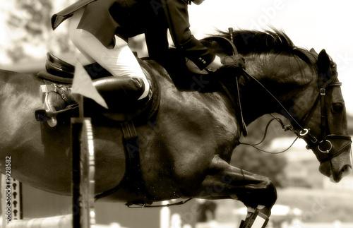 Fotobehang Paardrijden equestrian jumping & action (sepia tone)