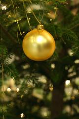 christmas tree series