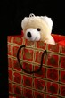 bear in christmas bag
