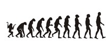 "Постер, картина, фотообои ""human evolution"""