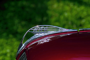 chrome hood ornament