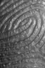 identity up close
