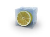 lemon on ice cube logo poster