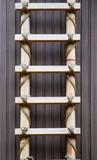 bamboo ladder poster