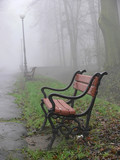 red bench in the fog poster