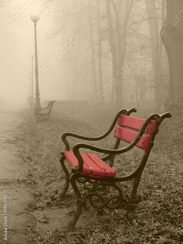 red bench in the fog © Jaroslaw Grudzinski