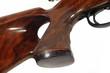 rifle grip - 1952934