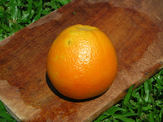 orange on a cutting board on lush bed of grass