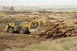 delivering logs 9 poster