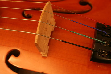 violin bridge