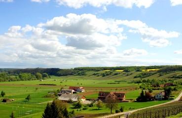 frankenland1