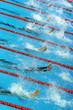 swimming start 2