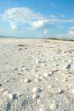 beach at lovers key florida usa poster