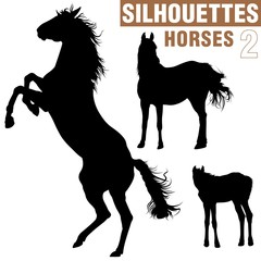 horses silhouettes 2