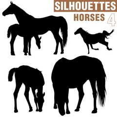 horses silhouettes 4