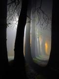Fototapety dawn and raylights