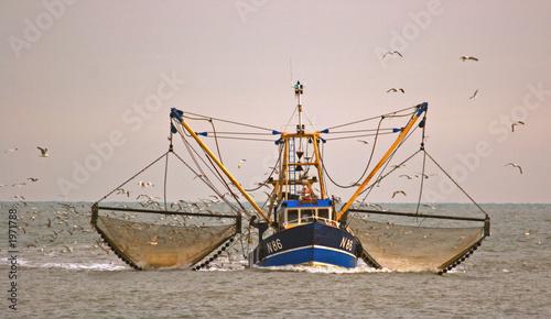 fishing boat - 1971788