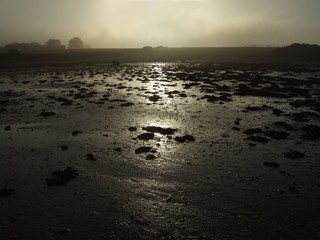 winter estuary
