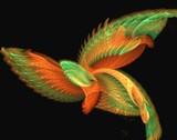 mystical bird poster