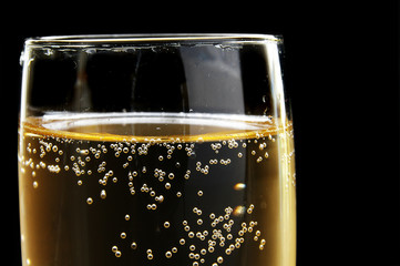 champagne glass closeup