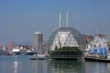 harbor aquarium poster